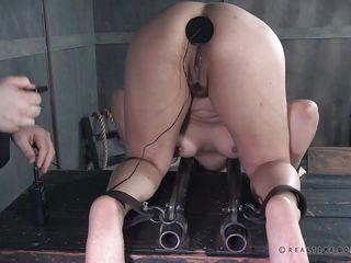 Порно бдсм в туалете